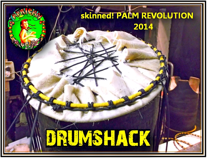 palm bass revolution  11
